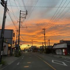 「最近の夕焼け。不気味だけど空一面オレンジ…」(1枚目)