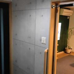 100均フェイクグリーン/フェイクグリーン/ウォールグリーン/玄関インテリア/壁紙DIY/壁紙 玄関横の壁をコンクリ柄の壁紙をDIY😁 …