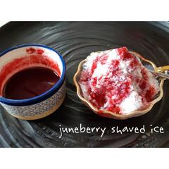 かき氷/シロップ/ジューンベリー/手作りおやつ/収穫 ジューンベリーでシロップ作り。  ホント…