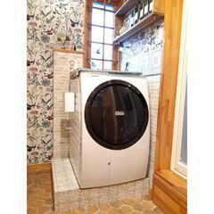 CAINZ/洗剤ボトル/ボタニカル柄/壁紙DIY/洗濯機パンカバー/洗剤収納/... 洗濯機パンカバーをDIY☆ 洗濯機周りが…(1枚目)