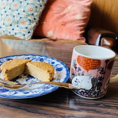 全制覇/おすすめ/薫るミルクティー味/ヨーグルト/焦がしキャラメル味/ハーベスト 昨日の焦がしキャラメル味のハーベストの食…