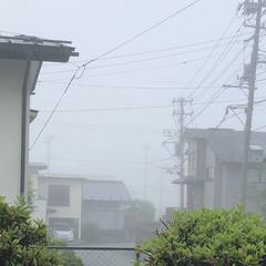 やませ/霧 こんにちは🎶 今日は朝から霧が出て少し肌…