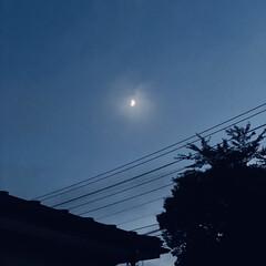 日暮れ/半月/月 こんばんは🌃 珍しくお月様が👀  1枚目…