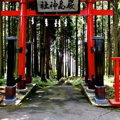 パワースポット/カモシカ/厳島神社 昨日の投稿のカモシカつながり😁 昨年友人…