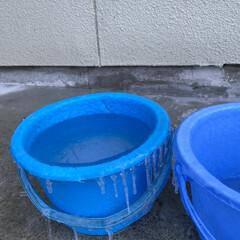 トイプードル/トイプー/犬/華音/氷柱/散布/... こんばんは☽・:* このバケツ雨漏り水漏…
