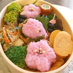 春/いなり寿司/桜型/花おすしの素/お花見/お弁当/... 春爛漫いなり寿司弁当 市販の花おすしの素…