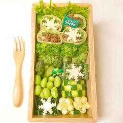 グリーン弁当/おしゃ弁/クリスマス弁当/クリスマス2019/ヘルシー/トルティーヤ/... 鮮やかなグリーンのお弁当 雪の結晶でクリ…