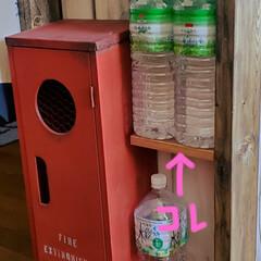 収納/キッチン収納/簡単/掃除/DIY ポチポチと気になってたとこを メンテナン…(4枚目)