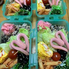今日のお弁当/エイハウス/ダイソー/お弁当 20200409おはようございます🍱 今…