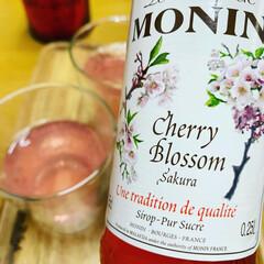 モナン さくら・シロップ 輸入食品 春食材(ジャム、コンフィチュール)を使ったクチコミ「桜ソーダ 最近のお気に入りです」(2枚目)