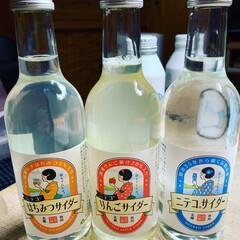 名水の郷/秋田美郷/ニテコサイダー/明治35年から続く伝統の味/六郷 どれにしようかな? はちみつバージョンは…
