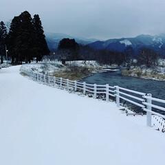 雪道/通学路 これから足跡がつく通学路 小学生の皆さん…