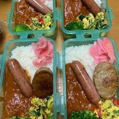 4個弁当/今日のお弁当/エイハウス/ダイソー 20200413月曜日おはようございます…(1枚目)