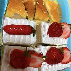 レア/チーズケーキ/苺/手作り/ケーキ 今日は朝から実家の襖張りのお手伝いへ🏃…
