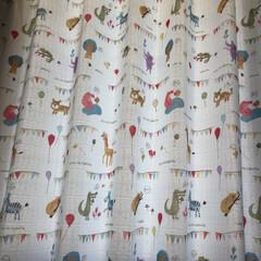 ここが好き 子ども部屋のカーテン