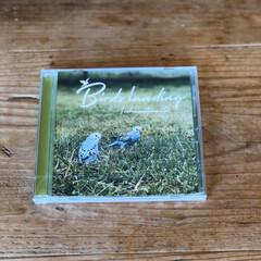 CD/セキセイインコ/インコ/フォロー大歓迎 私ごとですが昨日CDアルバムを発売しまし…