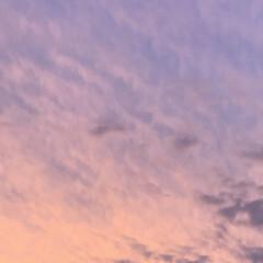夕焼け/暮らし 今日は、連投すみません。 あまり綺麗な夕…(4枚目)