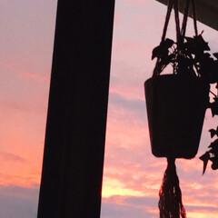 夕焼け/暮らし 今日は、連投すみません。 あまり綺麗な夕…(1枚目)