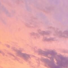 夕焼け/暮らし 今日は、連投すみません。 あまり綺麗な夕…(3枚目)