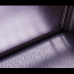 窓 ベランダ/ここが好き 柔らかい光が差し込み暖かい空気溢れるベラ…