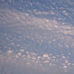 波模様/空/海/おでかけ/フォロー大歓迎 海? 空?  正解は、空でした!  一瞬…
