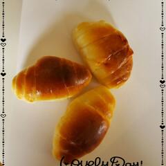 頑張ろう/上達したい/パン作り大好き/ホームベーカリー/ロールパン/リベンジ/... 今日も素敵な一日になりますように(♥Ü♥…