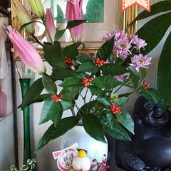 謹賀新年/丑年/花のある生活/花のある暮らし/我が家の玄関/今年もよろしくお願いします/... ⛩🌅🎍ℋᎯᏢᏢᎩ✮ŊᎬᎳ✮ᎩᎬᎯℜ🐄🌅🎍…(1枚目)