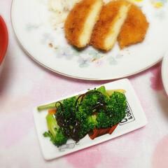 豆皿/我が家の夕食/おうちごはん/簡単レシピ/和えるだけ/ごま油/... ブロッコリーを沢山いただき  🥄茹でてご…