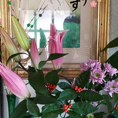 謹賀新年/丑年/花のある生活/花のある暮らし/我が家の玄関/今年もよろしくお願いします/... ⛩🌅🎍ℋᎯᏢᏢᎩ✮ŊᎬᎳ✮ᎩᎬᎯℜ🐄🌅🎍…(4枚目)