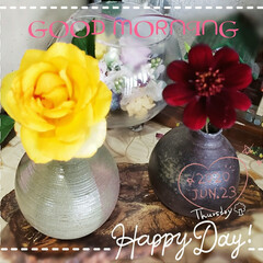 癒しの場所/癒しの空間/切り花/ガーデニング/お花大好き/花のある生活/... 今日も素敵な一日になりますように(♥Ü♥…