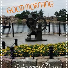 夢の国/ミッキーマウス/マリーゴールド/花のある生活/花のある暮らし/リミアのある暮らし/... 今日も素敵な一日になりますように(♥Ü♥…