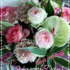 元気の源/癒しの場所/癒しの空間/誕生日花束/誕生日プレゼントの花/誕生日プレゼント/... 今日も素敵な一日になりますように(♥Ü♥…