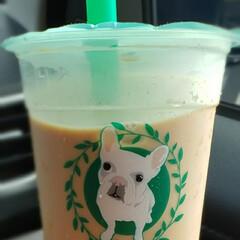 おでかけ/ブル プル/Bull pulu/黒糖タピオカ/黒糖タイガーミルクティー リニューアルオープンした商業施設に お買…