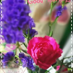 スターチス/ハナハマサジ/リモニウム/カーネーション/花大好き/癒しの空間/... 今日も素敵な一日になりますように(♥Ü♥…