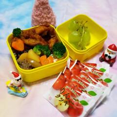 りんごクッキー/青森のお土産/サンタさん/サンタクロース/クリスマス/クリスマス雑貨/... 今日の娘のお弁当🍱🍴  ⸜❤︎⸝唐揚げ…(1枚目)