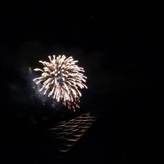 綺麗/夜空に/花火/年越し/年末 近所の 植物園からの 花火🎆💕が上がりま…