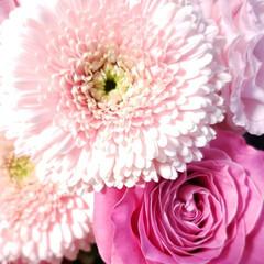 可愛い花/ありがとう/子供たちからのプレゼント/花のある生活/花のある暮らし/花束/... 誕生日に子供達から もらった可愛い花束た…(3枚目)