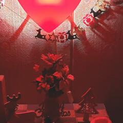 お花大好き/ハート大好き/100均雑貨/100均/メリークリスマス/寝室/... 今日も素敵な一日になりますように(♥Ü♥…(2枚目)