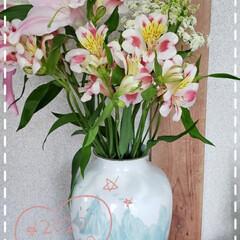 元気の源/玄関の花/玄関ホール/我が家の花/ガーデニング/お花大好き/... 今日も素敵な一日になりますように(♥Ü♥…