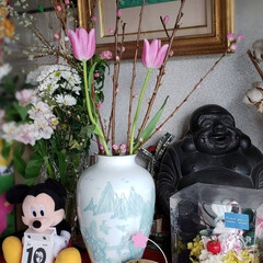 玄関インテリア/桃の花/桃の節句/フォロー大歓迎/最近買った100均グッズ/ダイソー/... 玄関に 桃の花とDAISOで買ったきた …