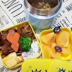女子高生のお弁当/スープジャー/保温ポット/お弁当のおかず/昼食/娘のお弁当/... 今日の娘のお弁当🍱🍴  ⸜❤︎⸝煮込みハ…