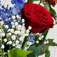 バラ/かすみ草/デルフィニウム/花束/ガーデニング/お花大好き/... 今日も素敵な一日になりますように(♥Ü♥…