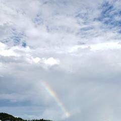 空を見上げる/夕方の景色/虹/空 ふと空を見上げたら~  🌈が出てたぁ〜⤴…