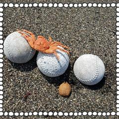 童心にかえる/海岸散歩/クルミ/野球ボール/ハート柄/リミアのある暮らし/... 先日海岸散歩中 見つけた👀💡  野球ボー…