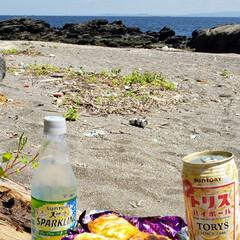 リフレッシュ/ソーセージパイ/休日ランチ/幸せな一日/至福のひととき/至福の時間/... 久しぶりに ソーセージパイを作って 海で…