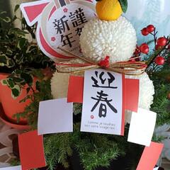 謹賀新年/丑年/花のある生活/花のある暮らし/我が家の玄関/今年もよろしくお願いします/... ⛩🌅🎍ℋᎯᏢᏢᎩ✮ŊᎬᎳ✮ᎩᎬᎯℜ🐄🌅🎍…(2枚目)