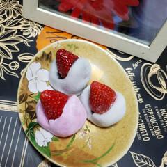 和菓子/スイーツ/リミアの冬くらし/いちご/いちご大福/フォロー大歓迎 かわいい〜 いちご大福を いただきました…