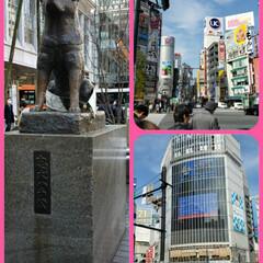 また明日から仕事/週末/楽しかった一日/いつもと違う感じ/フォロー大歓迎/おでかけ 今日は 東京へ遊びにいってきました🚃💭 …