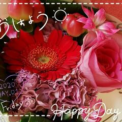 いつも花がある/癒しの空間/花のパワー/リビングにある花/ガーデニング/アレンジメントフラワー/... 今日も素敵な一日になりますように(♥Ü♥…