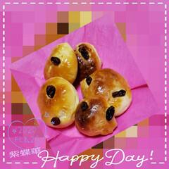 朝食/レーズンパン/パン作り/手作りパン/朝パン/フォロー大歓迎/... 今日も素敵な一日になりますように(♥Ü♥…